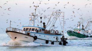 Pesca, da lunedì scatterà il fermo nell'Adriatico